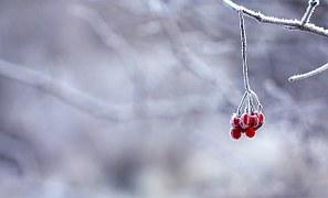 frozen-201495__180