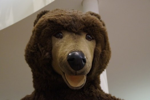 Bear 545682 1280