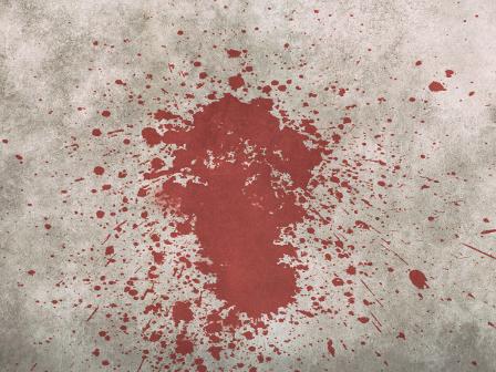 Nepal XI – Tag 24 – Blutrausch