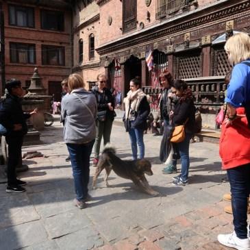 Nepal Rundreise / Gruppenreise – worauf ihr achten müsst!