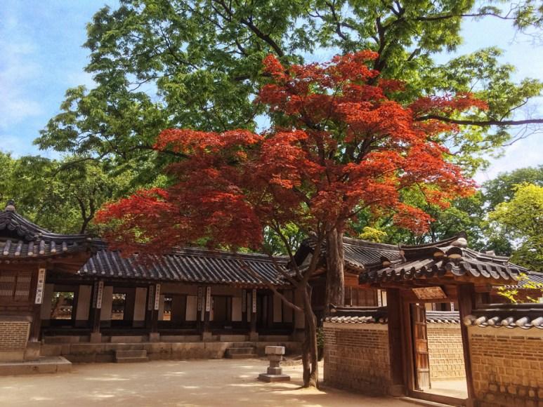 MellyLee-Seoul-021