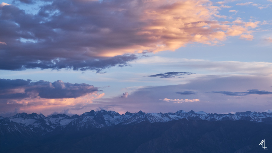 MLEE-Day03-AncientBristlecone-210