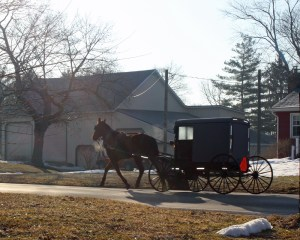 Amish Buggy Lancaster, PA March 8, 2014