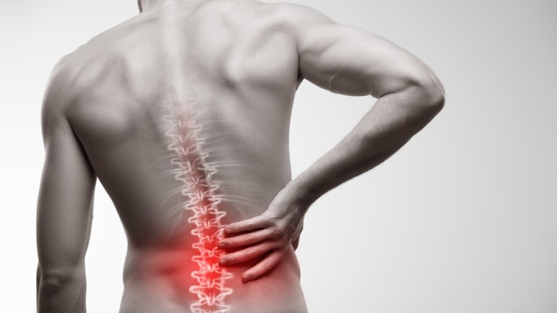Suffering From Lower Back Pain? – Join The Club.