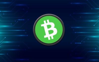 Bitcoin Cash (BCH) Profile