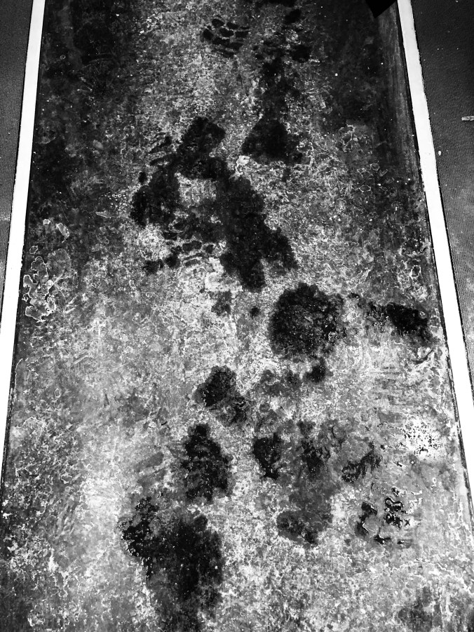 Tracks of salt and snow are seen on a carpet.