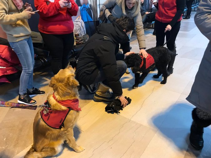 Customers stand around and pat a group of dogs, as they gather at Union Station.