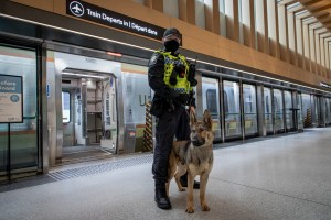 Dog and handler pose for pictures next to an UP Express train.