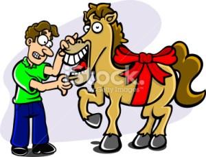 L7.imm1.cavallo regalo