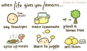 L13.imm.10.limoni