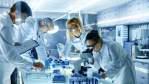 As áreas de pesquisa que mais captam recursos no Brasil