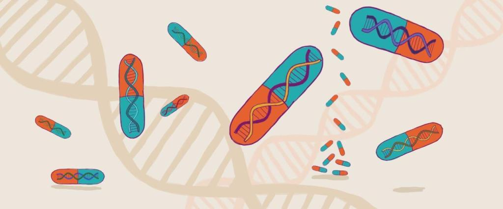 ilustração de comprimidos com molécula de DNA dentro