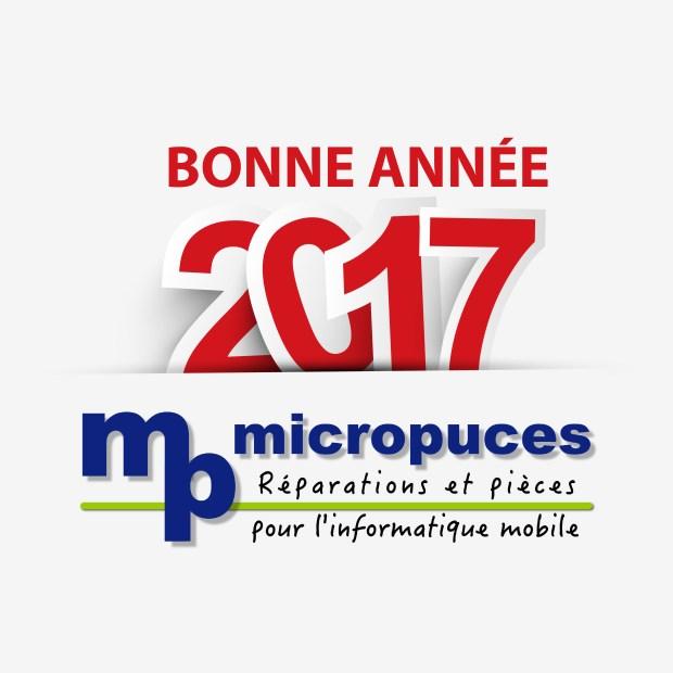 Bonne année 2017, micropuces brive la gaillarde