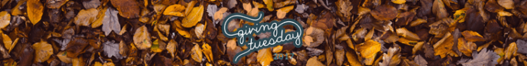 Banner with #GivingTuesday logo over image of fall leaves