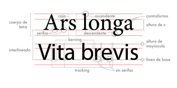 anatomía-tipográfica
