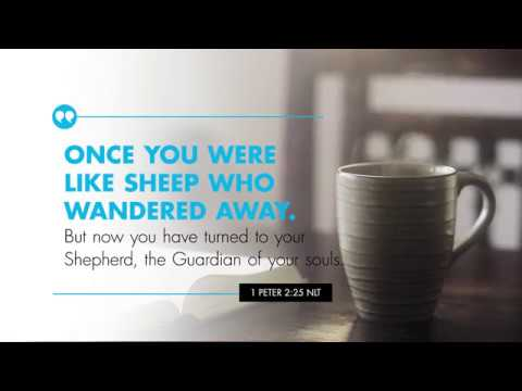 K-LOVE's Verse of the Day: I Peter 2:25 – YouTube