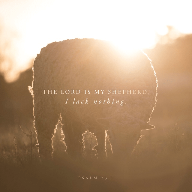 Psalm 23:1-3 NIV