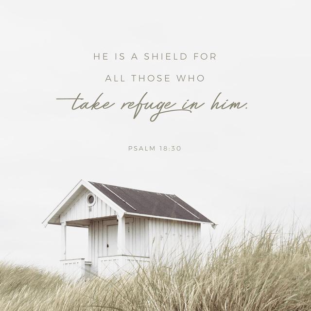 Psalms 18:30 ESV
