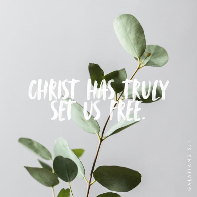 Galatians 5:1 NLT