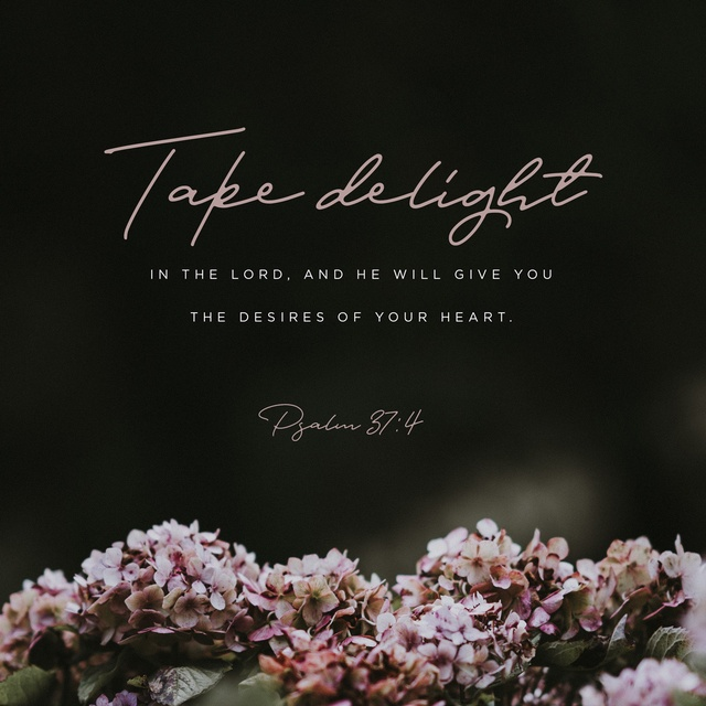 Psalm 37:4 NIV