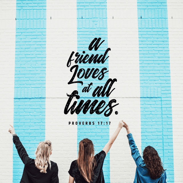 Proverbs 17:17 NIV