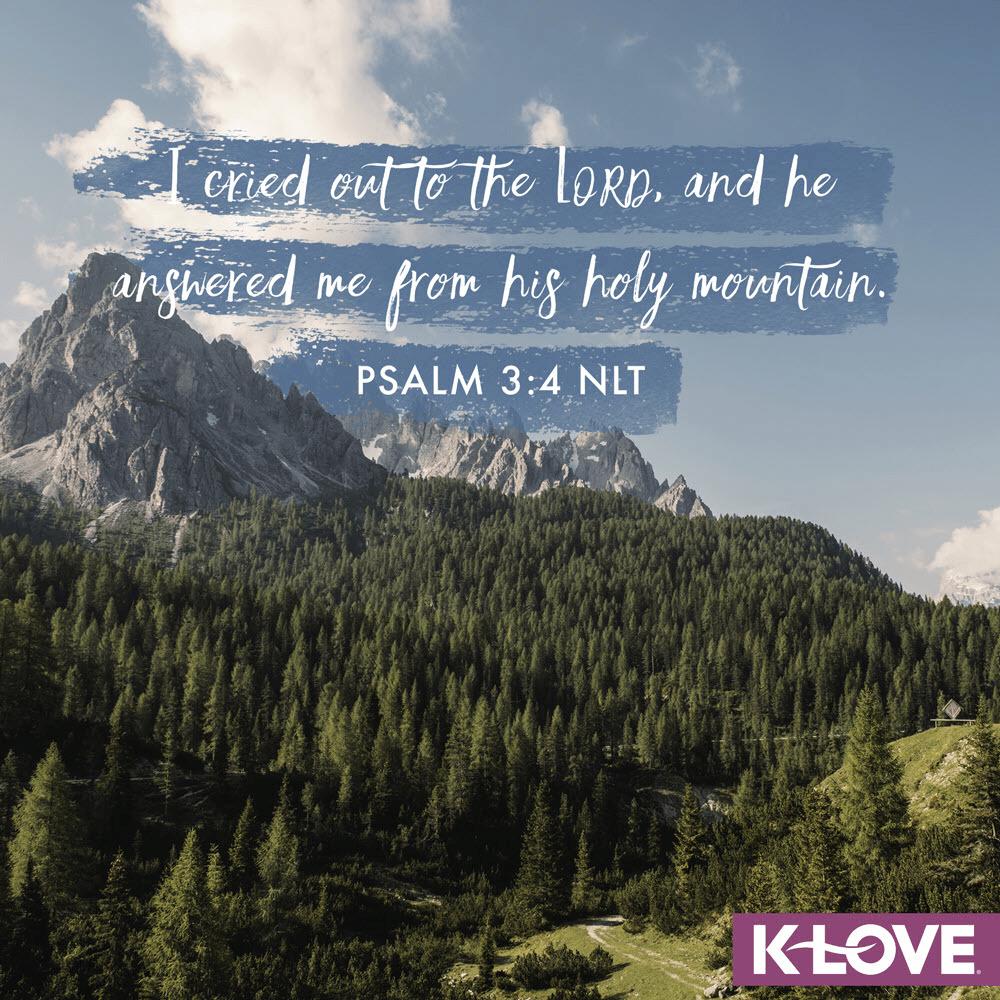 Psalm 3:4 (NLT)