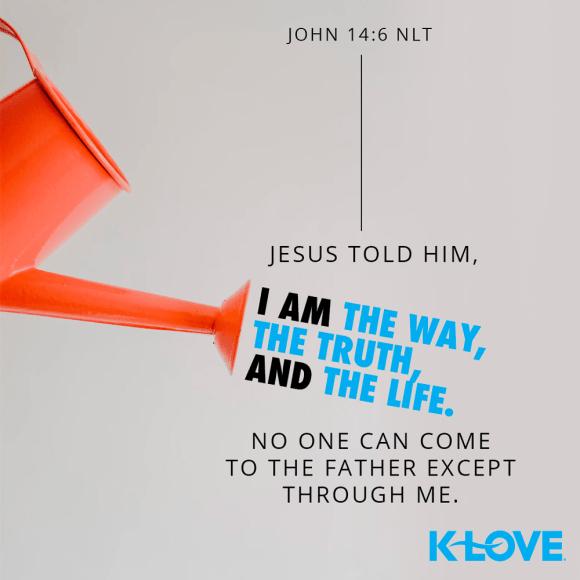 John 14:6 (NLT)
