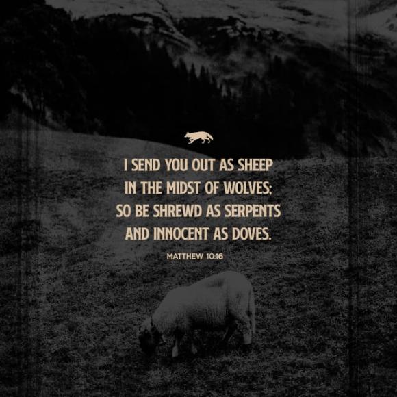 Matthew 10:16 NASB