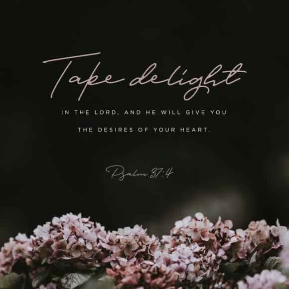 Psalms 37:4 NIV