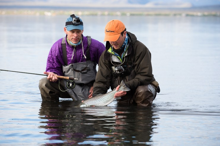 Iceland Trout TMD June 2014 FB-142