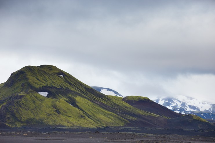 Iceland Trout TMD June 2014 FB-787