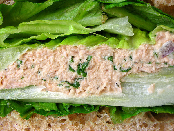 Tuna Salad Sandwich Close Up