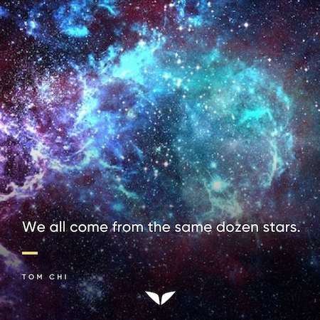 We all come from the same dozen stars - Tom Chi