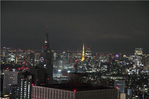 Day 2 in Japan 18