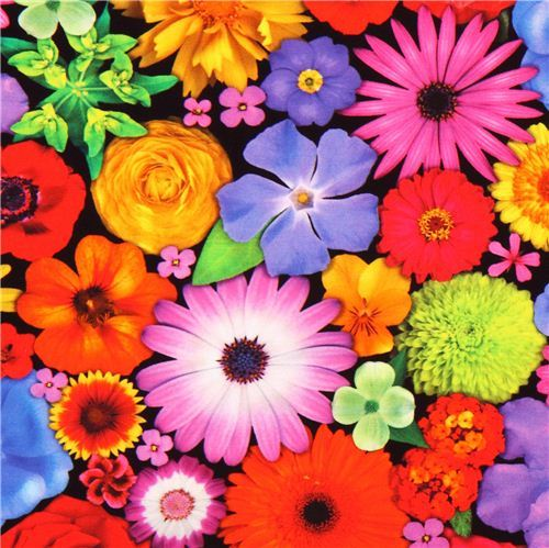 Bloominescent colorful flowers Poplin fabric Robert Kaufman