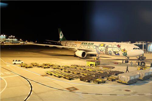 We saw the Hello Kitty Plane 1