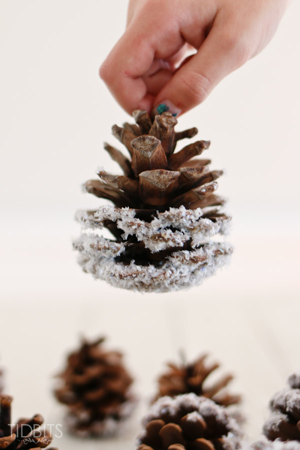01-diy-snow-covered-pinecones-9