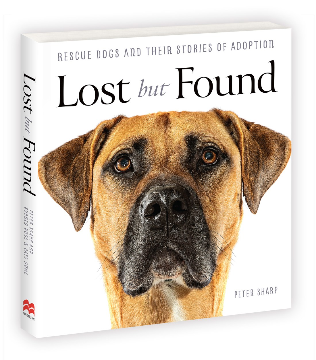 PS_Lost But Found_Book_Cover_2