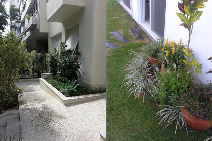 plantas no jardim ornamentais