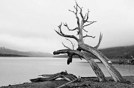 ushuaia_blog_0010
