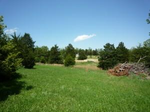 House & 15 acres