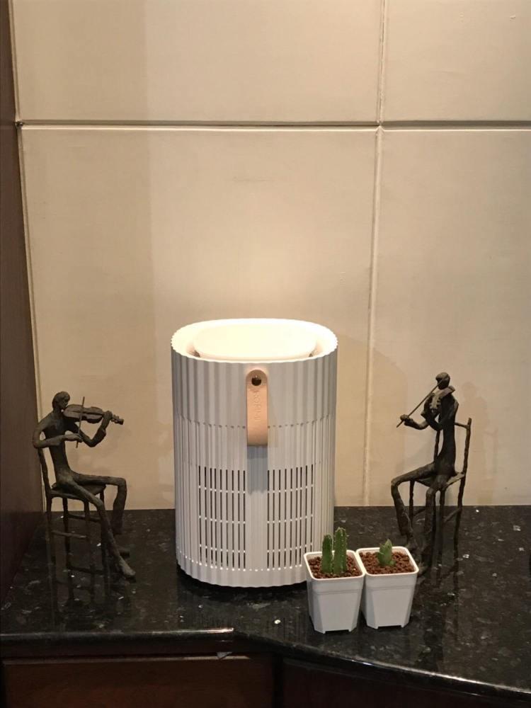 Roommi 空氣清淨機開箱!專為大坪數設計的質感漂亮家居品 13