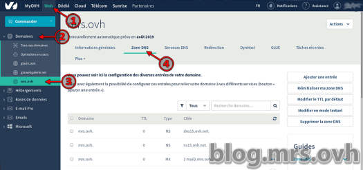 Configuration Domaine chez le registar