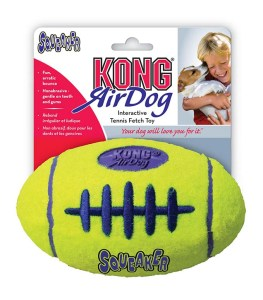 Toys for Labs - Kong Football