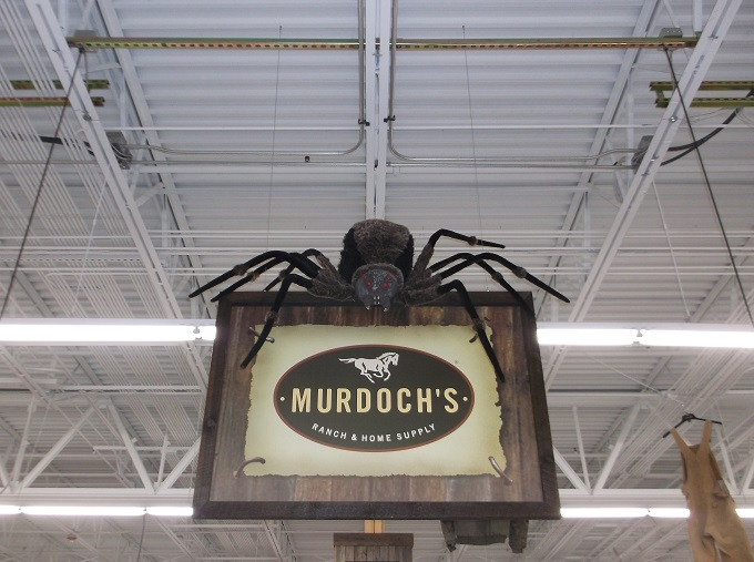 Happy Halloween from Murdoch's