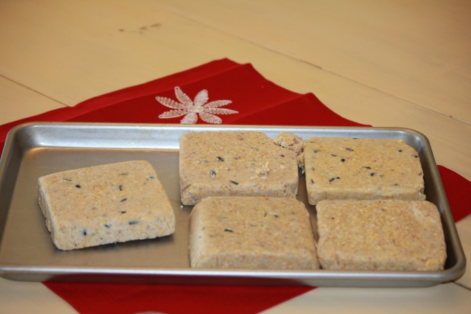 Open suet packages and put on cookie tray