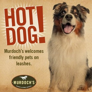 Murdoch's is pet friendly