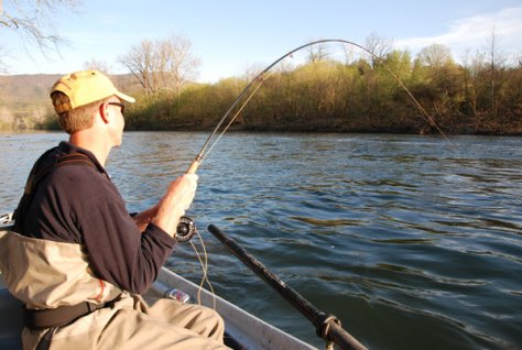 Fly Fishing Report for Bass