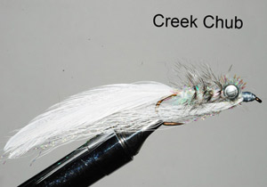 Murray's Magnum Creek Chub Streamer