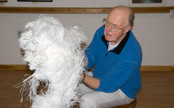 Ostrich Plume